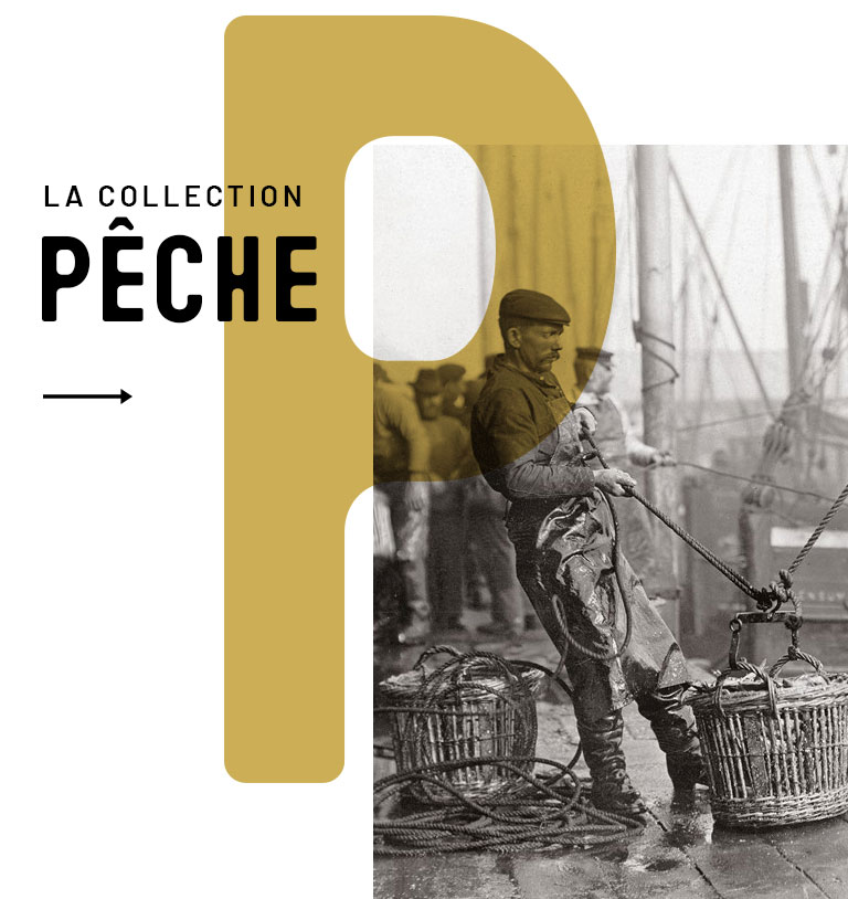 Collection Pêche