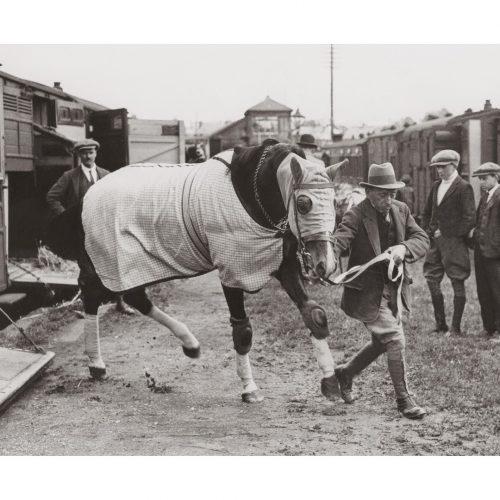 Photo d'époque Equitation n°17 - photographe Victor Forbin