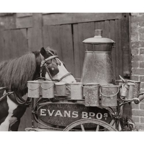 Photo d'époque Equitation n°18 - photographe Victor Forbin