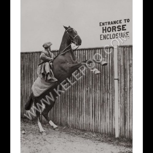 Photo d'époque Equitation n°21 - photographe Victor Forbin