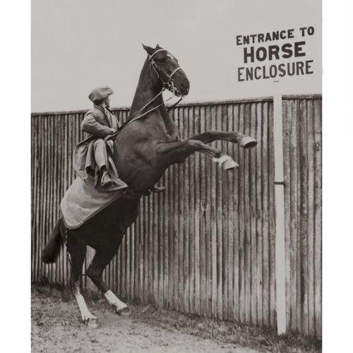 Photo d'époque Equitation n°21 - photographe Victor Forbin