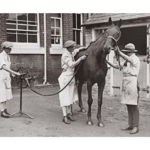 Photo d'époque Equitation n°25 - photographe Victor Forbin