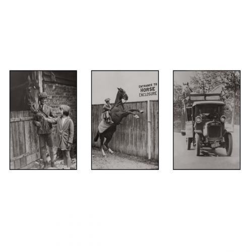 Photo d'époque équitation n°32 - triptyque - Victor Forbin