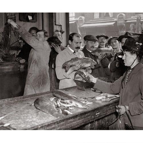 Photo d'époque commerce n°03 - poissonnerie - photographe Victor Forbin