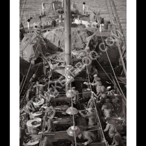 Photo d'époque pêche n°33 - photographe Victor Forbin
