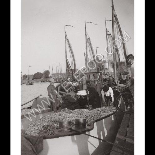 Photo d'époque pêche n°44