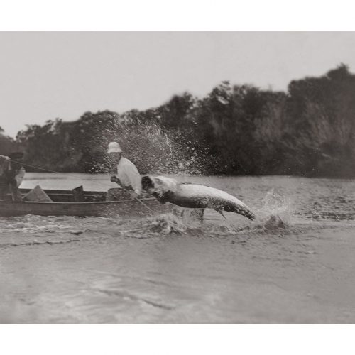Photo d'époque pêche n°19 - photographe Victor Forbin