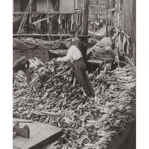 Photo d'époque pêche n°35 - photographe Victor Forbin