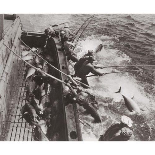 Photo d'époque pêche n°48