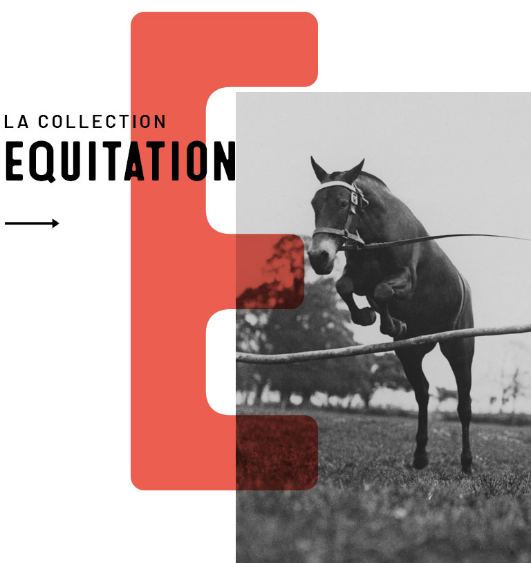 Collection Equitation