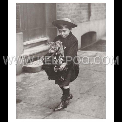 Photo d'époque Enfance n°13 - petit garçon avec petit chat