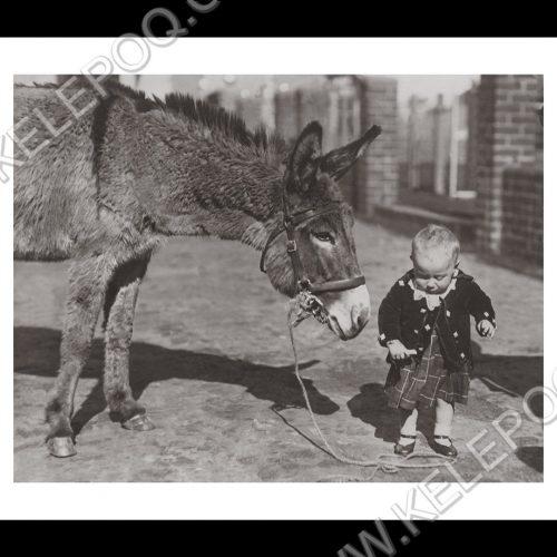 Photo d'époque tendre enfance n°18 - bébé avec un âne
