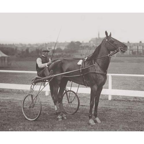 Photo d'époque Equitation n°34 - trotteur - Southend-on-Sea - 1901 - photographe Victor Forbin