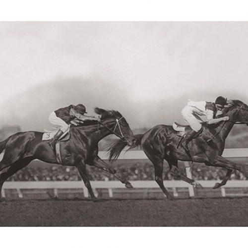 Photo d'époque Equitation n°39 - W.S. Cox Plate - photographe Victor Forbin