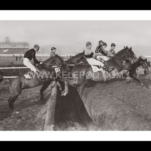 Photo d'époqe Equitation n°43 - course d'obstacles Newbury - photographe Victor Forbin