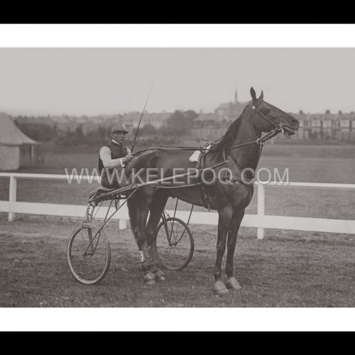 Photo d'époqe Equitation n°34 - trotteur - Southend-on-Sea - 1901 - photographe Victor Forbin