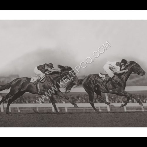 Photo d'époqe Equitation n°39 - W.S. Cox Plate - photographe Victor Forbin