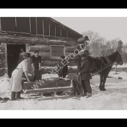 Photo d'époque montagne n°89 - traineau à cheval
