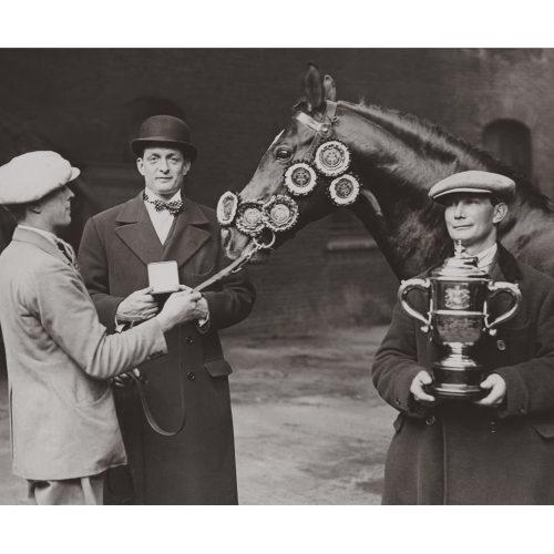 Photo d'époque Equitation n°51 - remise des prix - étalon