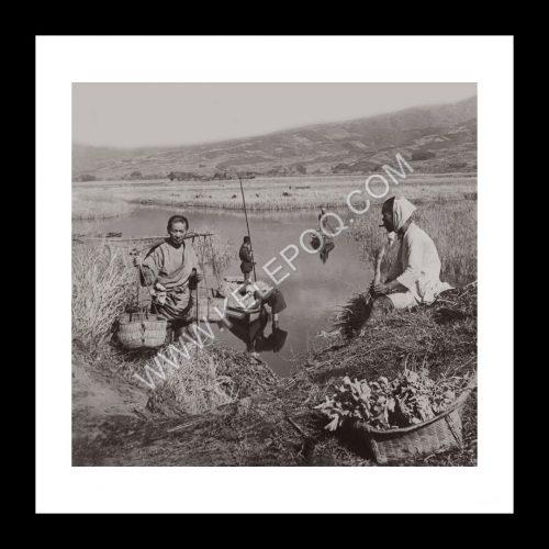 Photo d'époque invitation au voyage n°08 - rizières