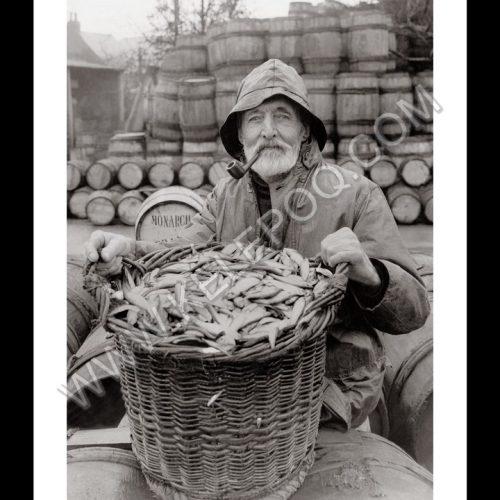 Photo d'époque Pêche n°81 - pêcheur de sardines