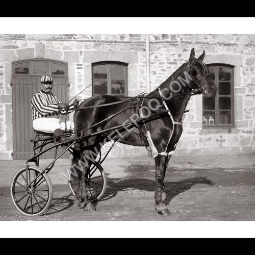 Photo d'époque Equitation n°56 - Artezia Jument baie née en 1890 gagnante du prix d'Amérique à Nice