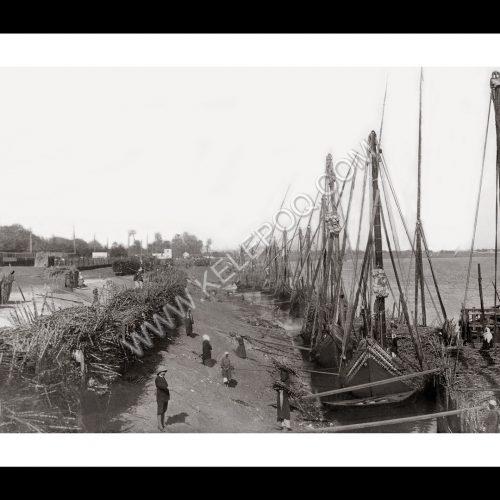 Photo d'époque Invitation au voyage n°10 - Déchargement de la canne à sucre sur le Nil