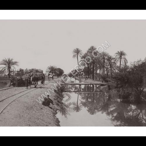 Photo d'époque Invitation au voyage n°11 - bord du Nil en Egypte