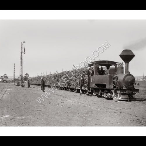 Photo Locomotive n°17 - Transport de la canne à sucre en Haute Egypte