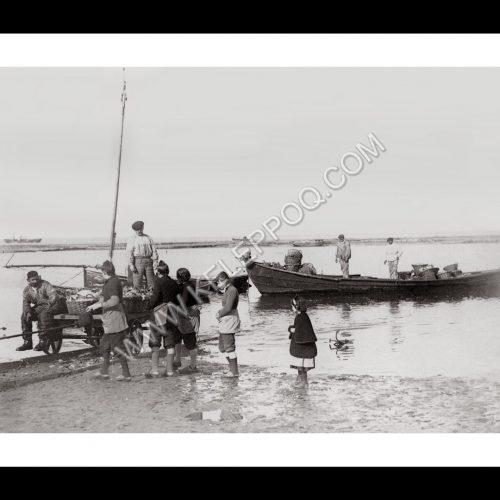 Photo d'époque Noirmoutier n°14 - retour de pêche