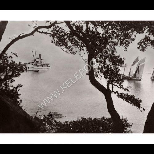 Photo d'époque Noirmoutier n°15 - vue mer du bois entre la Plage des Dames et l'Anse Rouge