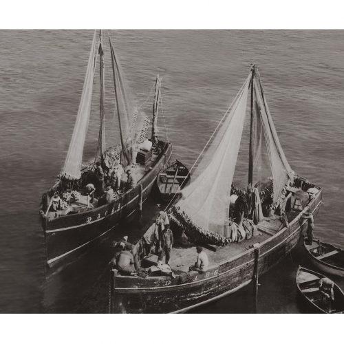Photo d'époque Pêche n°84 - bateaux de pêche à Douarnenez