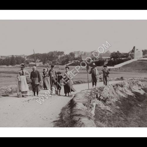 Photo d'époque Campagne n°23 - travail des champs en famille
