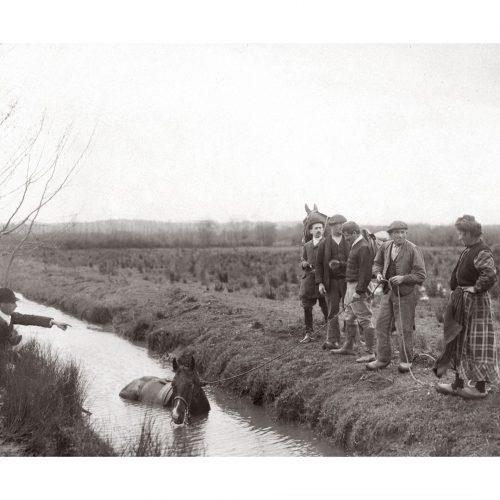 Photo d'époque Equitation n°59 - sauvetage d'un cheval tombé dans une rivière