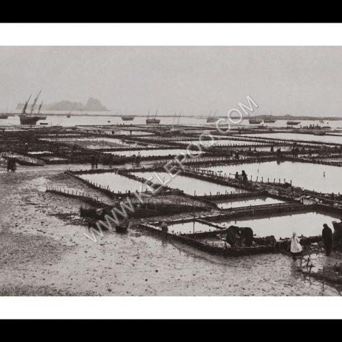 Photo d'époque Cancale n°05 - Parcs à huîtres