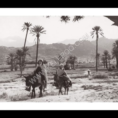 Photo d'époque Invitation au voyage n°15 - hommes berbères à dos d'ânes