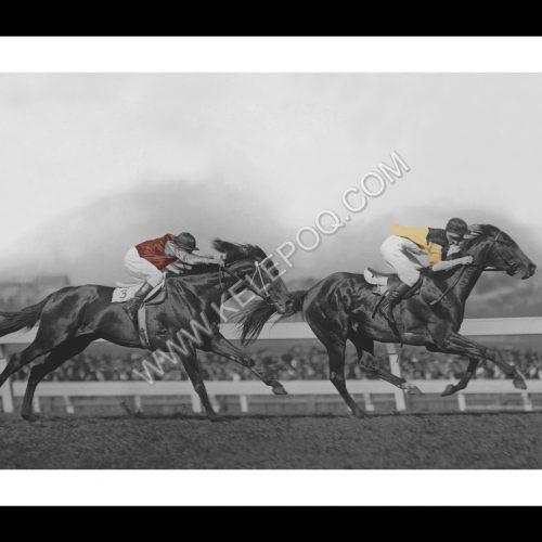 Photo d'époque Equitation couleur n°39 - W.S. Cox Plate (60x90) Photographe Victor Forbin