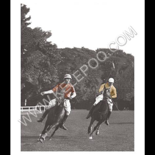 Photo d'époque Equitation couleur n°63 - match de polo - Equipe anglaise - entrainement à Hurlingham (40x60)