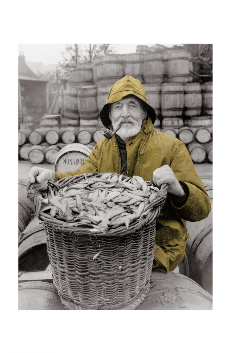 Photo d'époque Pêche couleur n°81 - pêcheur de sardines (1M50)