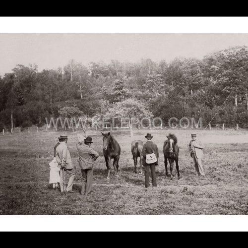 Photo d'époque Campagne n°31 - marchands de chevaux
