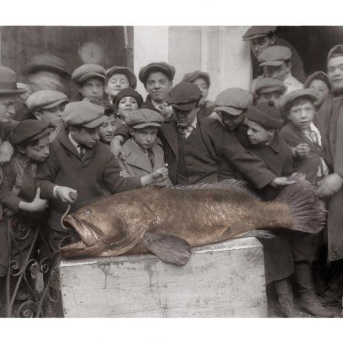 Photo d'époque Pêche couleur n°29 - trophée de pêche - photographe Victor Forbin