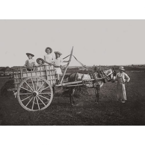 Photo d'époque Campagne n°32 - enfants dans une charrette