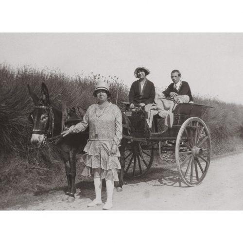 Photo d'époque Noirmoutier n°30 - voiture tirée par des ânes